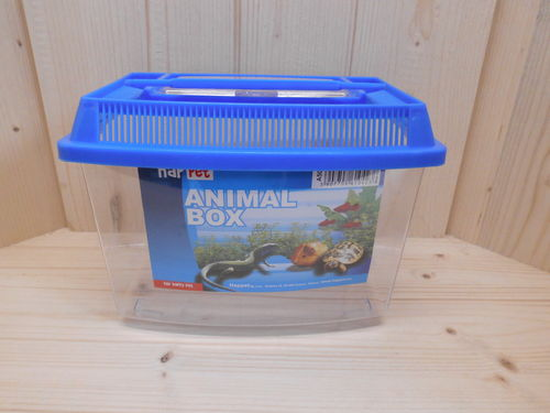 Reptilien Transportbox Terrarium Box Transport